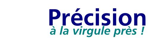 Services conviviaux du traduction et d'interprétariat